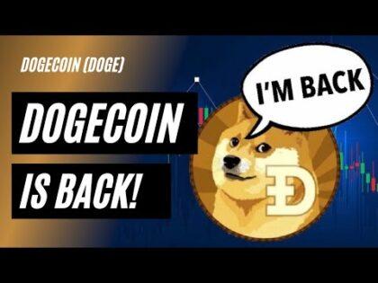 why did dogecoin go up   Coin Crypto News