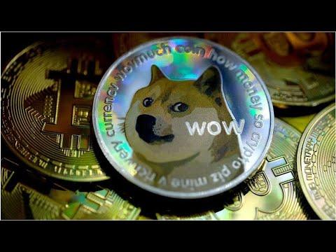 Dogecoin – Much Elon Musk – Very Money