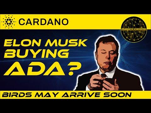 🔥 Elon Musk Buying Cardano (ADA)? 🔥   Cardano Is Going To Launch 🚀   Cheeky Crypto