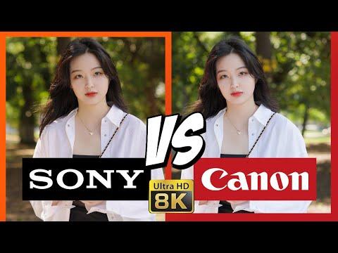索尼A1 VS 佳能EOS R5「视频篇」:索尼能不能让1系列再次伟大 ?