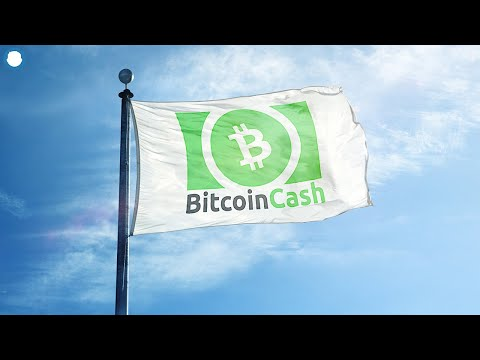 Is Bitcoin Cash Undervalued In 2021? – Price Prediction & Bought $50k ?