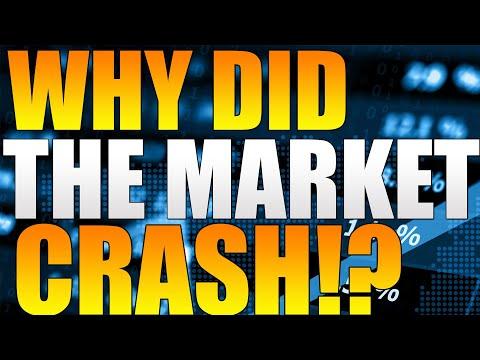 MASSIVE Crypto Market CRASH! CRASH EXPLAINED! THETA, Vechain, Bitcoin, Ethereum! Crypto Coin Market!