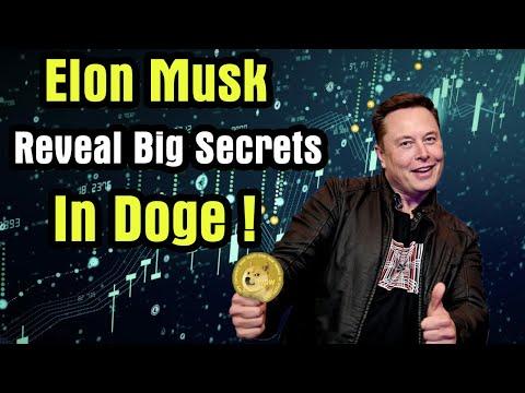 Elon Musk Reveal Big Secrets in Doge ! All Investor Must Watch