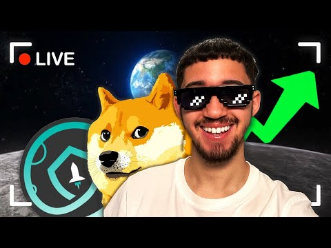 ? Dogecoin/SafeMoon Live Stream | What is Going ON?