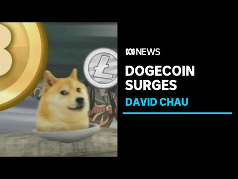 Dogecoin 'bubble' surges ahead of Elon Musk's debut on Saturday Night Live   ABC News
