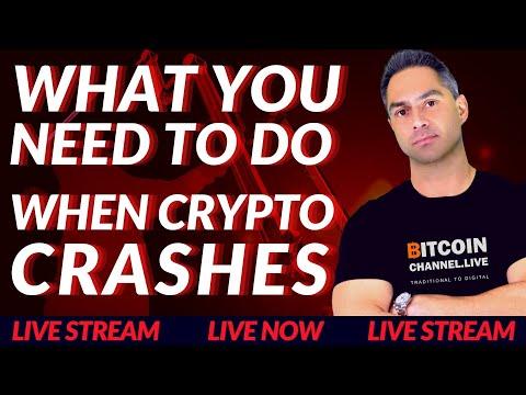 DogeCoin News Today -Bitcoin CRASH Today – Cardano News – Polygon Matic News  ?Live