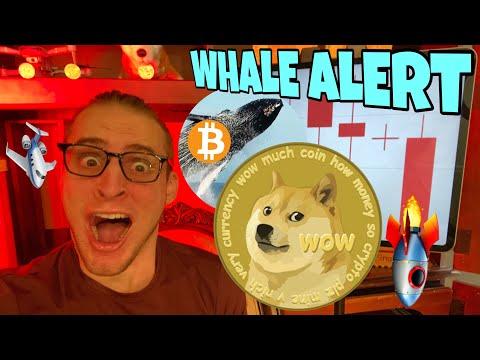 Bitcoin Whales CRYPTO CRASH ATTEMPT ⚠️ Dogecoin Fall ⚠️