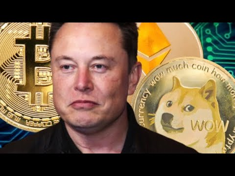 ?URGENT ?Dogecoin $ Bitcoin Update! To The Moon!