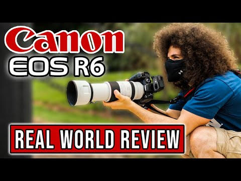Canon EOS R6 Real World Review: The Ultimate Hybrid Mirrorless Camera?!