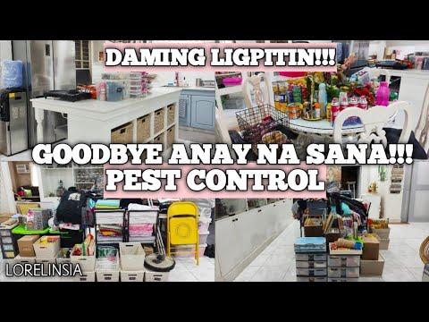 Goodbye Anay na Sana!!! | Pest Control | Lorelin Sia
