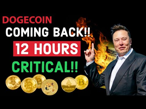 DOGECOIN HUGE UPDATE ! NEXT 12 HOURS CRITICAL! DOGECOIN COME BACK?  LATEST NEWS & PRICE UPDATES