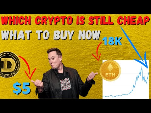 Dogecoin News:Why crypto is only 10% of where it should be, What COINS im buying to 10x my portfolio