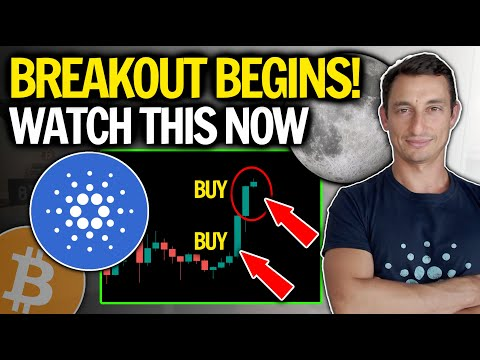 WATCH THIS BEFORE BUYING CARDANO (ADA) AT ALL TIME HIGH PRICES!  Tips for New Crypto Investor