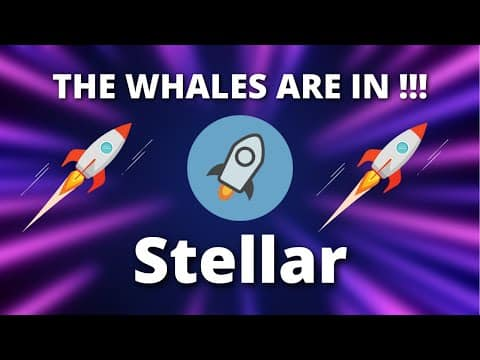 XLM PRICE PREDICTION – THE WHALES JUST ENTERED HURRY UP !!! – STELLAR CRYPTO PRICE PREDICTION
