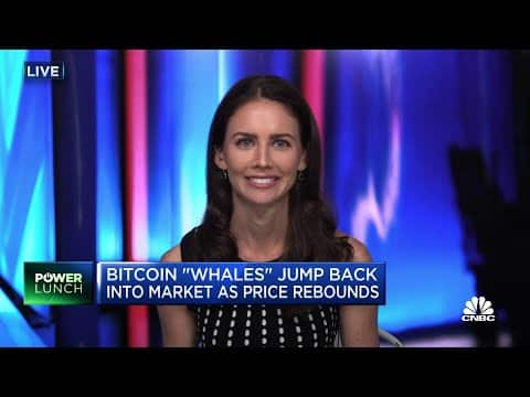 Bitcoin 'Whales' jump back into market as crypto prices recover
