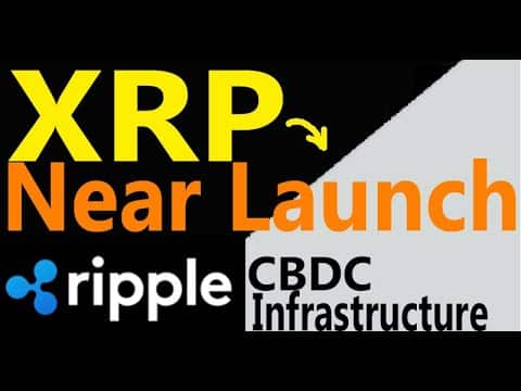 NEAR LAUNCH XRP Central Bank Digital Currency Infrastructure, Celent Ripple, SEC Gensler In Trouble