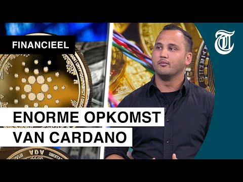 'Cardano goed op weg om Ethereum te killen'