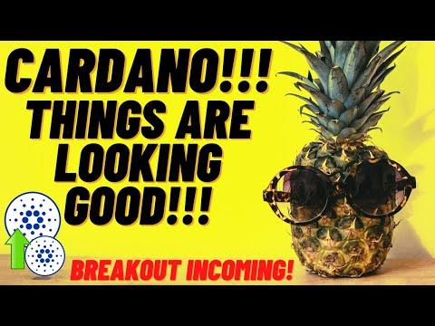 Cardano ADA Update, Breakout Coming!? Cardano US Government Partnership Rumours! BTC Weekly MACD!!!!