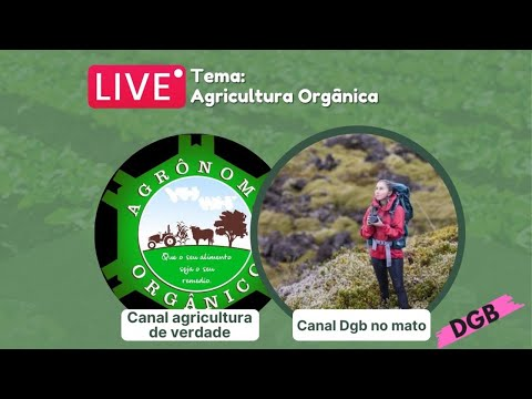 Saída Das Cidades Para O Campo – AGRÔNOMO ORGÂNICO