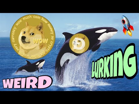 The Most Mysterious Dogecoin Whale ⚠️