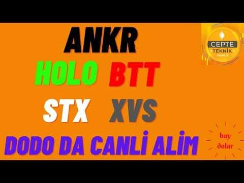 ANKR   HOLO   BTT   STX   XVS   DODO Teknik analizleri