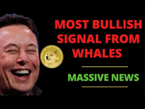 DOGECOIN IS GOING TO BLOW UP AFTER THE WHALES DID THIS! (HUGE UPDATE) | DOGECOIN NEWS