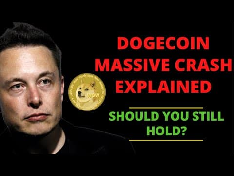 THIS IS WHY DOGECOIN CRASHED TODAY! (IMPORTANT FOR HOLDERS!) | DOGECOIN NEWS