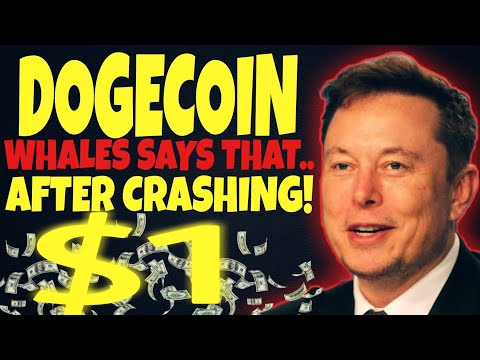 DOGECOIN NEWS: CRASHING! WHALES SAYS THAT.. AFTER WILL REACH $1 SOON… DOGECOIN NEWS TODAY